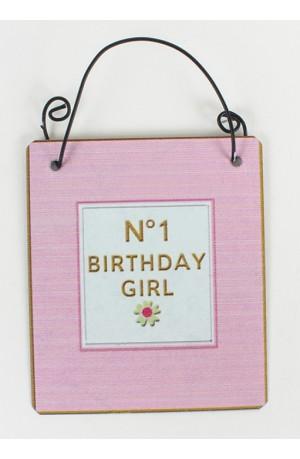 No 1 Birthday Girl Pink Metal Sign