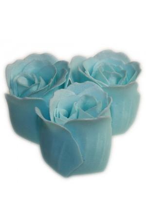 Baby Blue Bath Roses