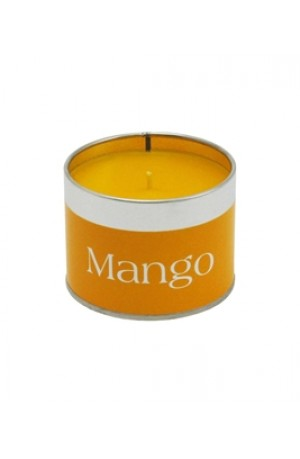 Mango Coordinate Tin Candle
